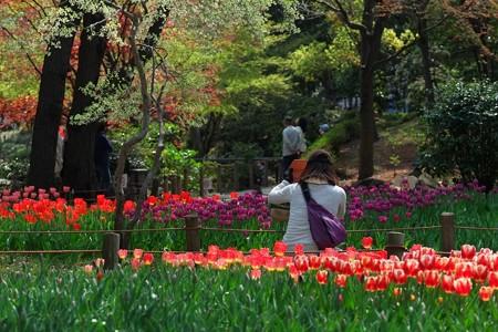 2014.04.09 横浜公園 iPad