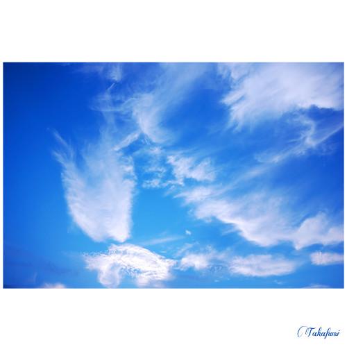 kyoto sky