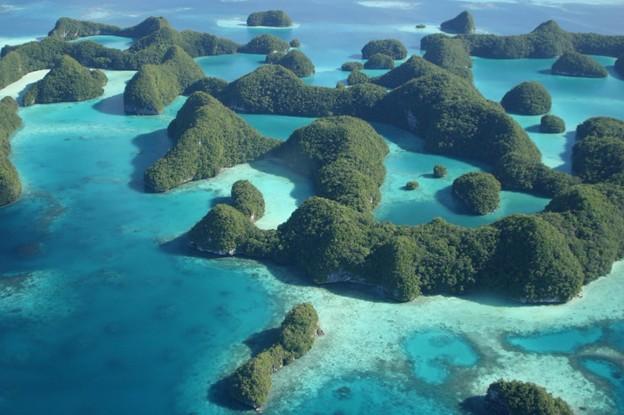 パラオ 美しいサンゴ礁