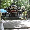 写真: 新屋山神社 本宮
