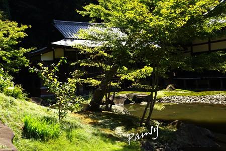 神無月の円覚寺 27