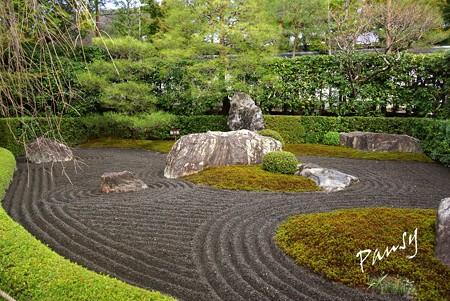 陰の庭 妙心寺 退蔵院 8
