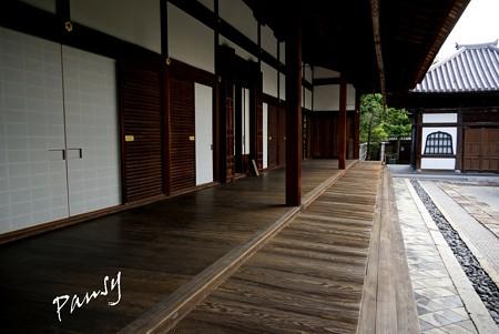 本堂と祖堂・・妙心寺 大心院 8