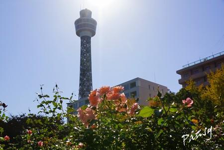 Yokohama 136