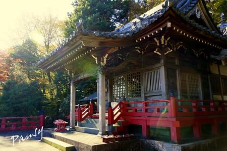 箱根の紅葉 064