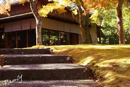 箱根の紅葉 144