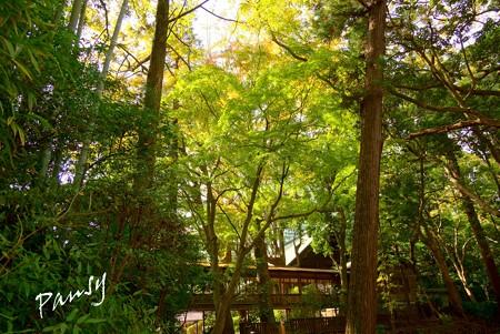 報徳二宮神社 3