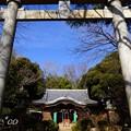写真: 吾妻神社・・