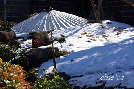 雪残るぼたん庭園・・