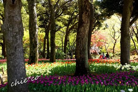 横浜公園 125