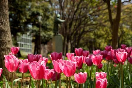 横浜公園 195