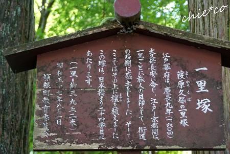 箱根・十国峠 176