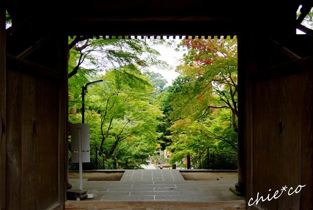 円覚寺総門より・・