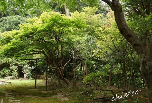 北鎌倉 058