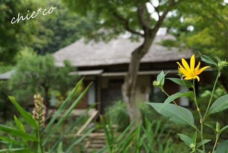 北鎌倉 065