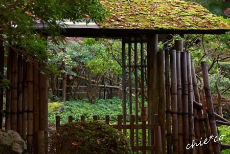 箱根 長安寺-047