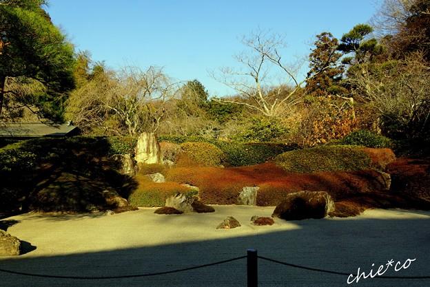 枯山水庭園・・