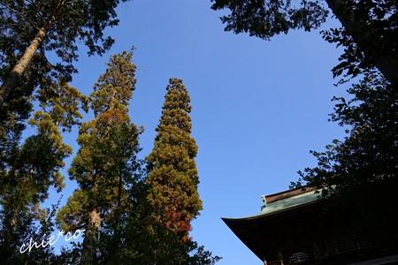 北鎌倉-271