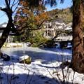 Photos: 雪彩の北鎌倉-030