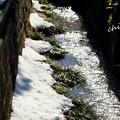 Photos: 雪彩の北鎌倉-034