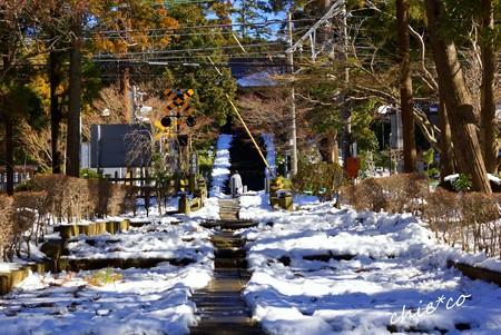 雪彩の北鎌倉-037