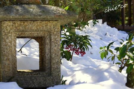 雪彩の北鎌倉-161