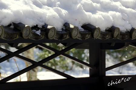 雪彩の北鎌倉-186
