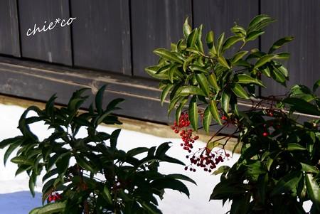 雪彩の北鎌倉-086