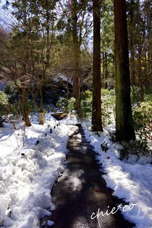 雪彩の北鎌倉-109