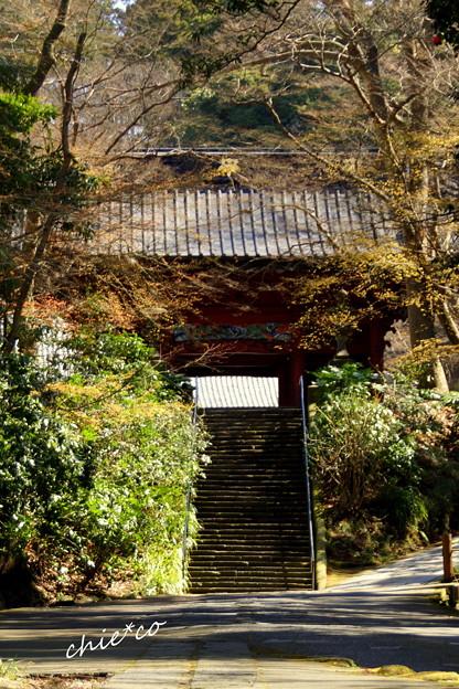 鎌倉-226