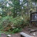 三平峠に登り一気に・・・