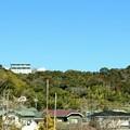 裏山の国民宿舎