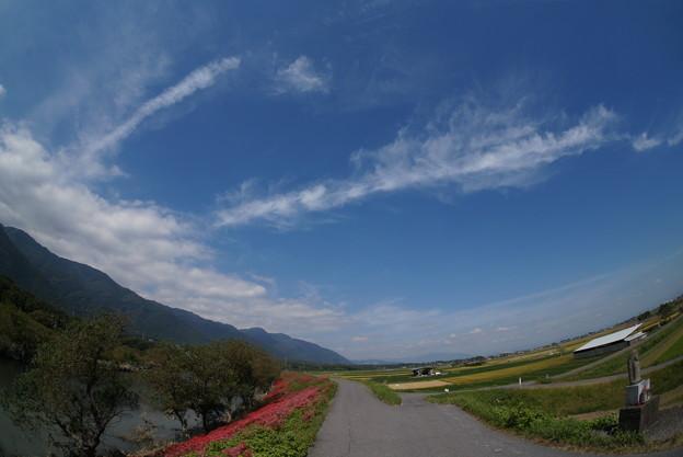 青空と津屋川の堤防。