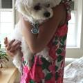 Photos: お姉ちゃんに抱っこされる由芽