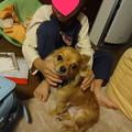 Photos: yukichi