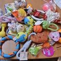 Photos: 大量のおもちゃ!