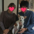 Photos: ふく改めゆずに家族が出来ました!