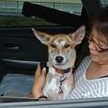 Photos: 最初は緊張していた姫子