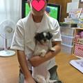 Photos: koumekazoku