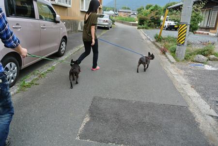 ママとお姉ちゃんとお散歩