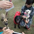 Photos: リリィ&メグ&真音
