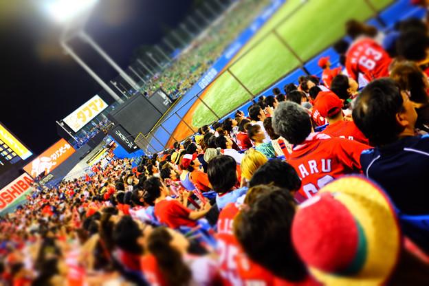 神宮球場で勝利を願う赤ヘル応援団