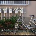 自転車のある風景 #62