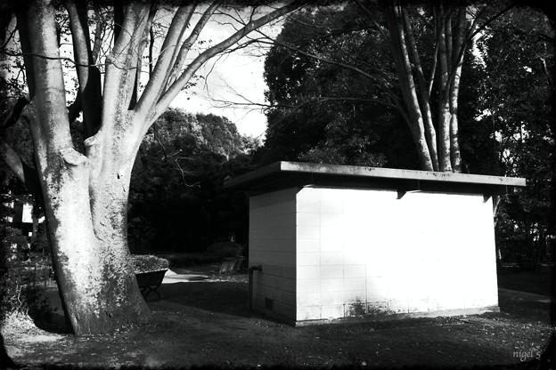 駒澤公園 #5