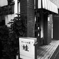 Photos: 三者三様