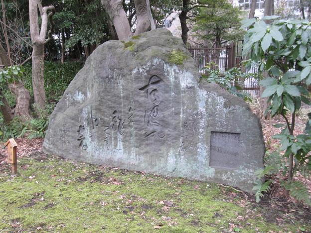 清澄庭園にある松尾芭蕉の古池の句碑