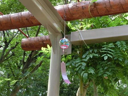2013年7月28日(日)小鳥の入居促進