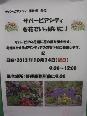 2013.10 ガーデニングサークルよりお知らせ