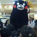 写真: くまモン激かわッ(///∇...
