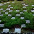 Photos: 東福寺方丈庭園
